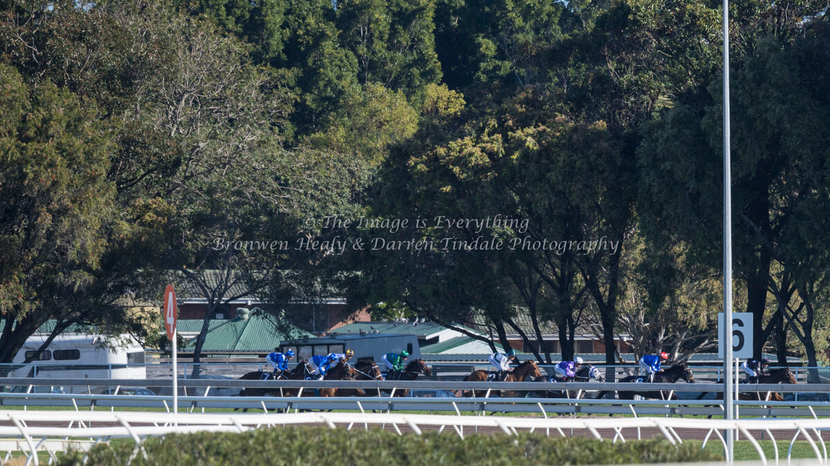 Warwick Stakes Day. Royal Randwick Racecourse. Saturday 19 August 2017.