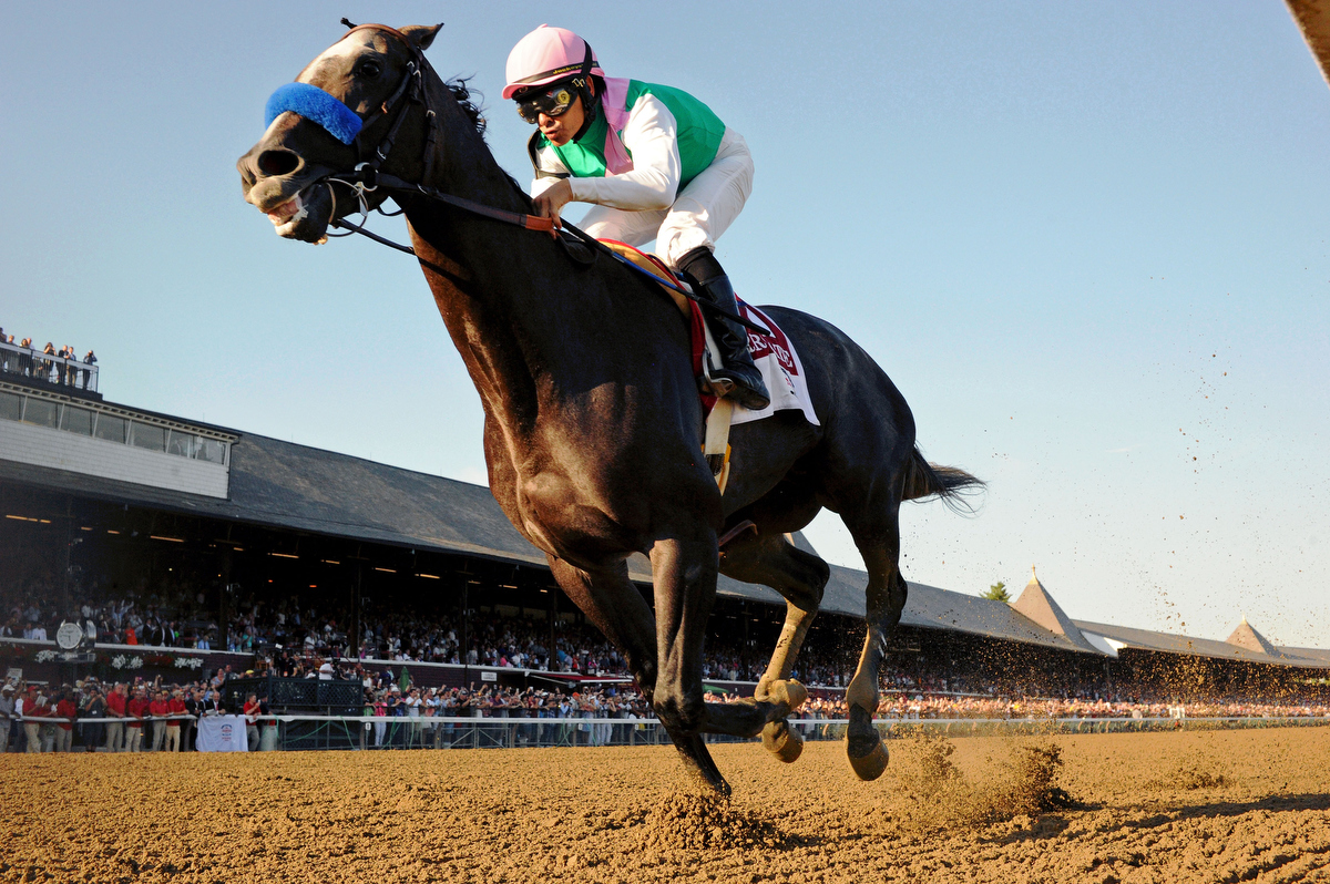 Worlds best? Arrogate. Pic: Bob Mayberger/Eclipse Sportswire/Getty Images